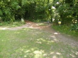Entrance in wood next to fishing pond. Humped surface on entrance.