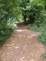 Path surface is soft wood-chip, uneven. Survey done in summer when surface was dry. Maybe less secure when wet