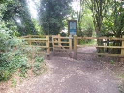 Path enters Gobions Wood Nature Reserve.