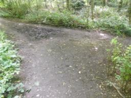 Path bends to left; large muddy area engulfs majority of path.