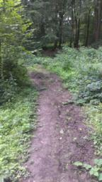 Path after bench is heavily overgrown and boggy and so narrows - usable width 1m.