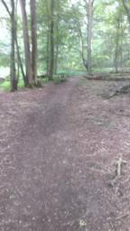 Path opens out and is clean and flat.