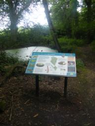 In front of a small pond there is an information board with a map and details about the woods and its wildlife.  This is positioned on level ground.