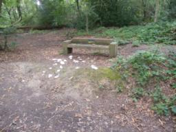 One of two benches, to the right of path up a mound at 1:9 (11.1%). Low bench with low back.
