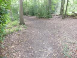 Path maintains a relatively flat course on hard soil based surface.