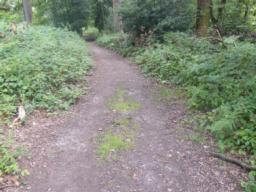 Path descends over 30 metres with varying gradient of between 1:12 (8.3%) and 1:6.5 (15.3%).