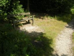 Second bench on route. 1.5 metres off path, up slight slope, grassy and uneven surface. Nice views over meadow.