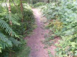 Path again meets steep slope of 1:6 (16.7%).