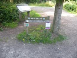There is a wide uninhibited route onto the path near the main car entrance. Here find an information board about the whole woodland and directions to the Sculpture Trail, which begins in between the two main routes.