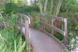 There is a bridged walkway through the nature garden.