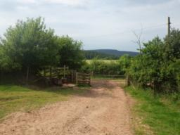 At the end of this field there is another gate/kissing gate onto a good farm track.