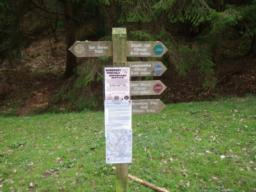 Close to the noticeboard, there is a signpost which will start you in the right direction.  Each trail has a different colour code.  Longcombe is blue.
