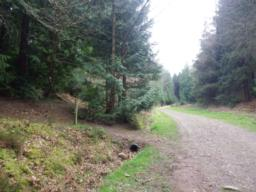 After passing the gate, the forest track, at least 2m wide, climbs, with a recreation area on the left as it enters the forest.