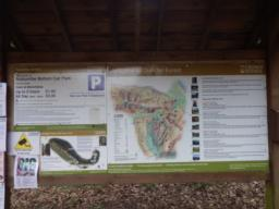 At the top of the car park, there is a large noticeboard with information about Dunster Forest and its many trails.