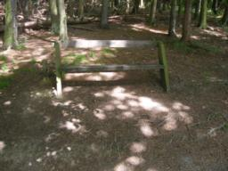 Regular seats. Exposed tree roots at base of bench.