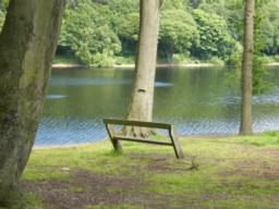 Seat situated off path on side of reservoir.