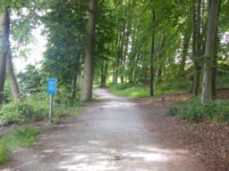 Path flat through wooded area.