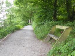 Bench positioned next to the path