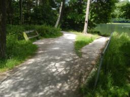 At bench concrete path leads off main route and descends to accessible fishing platform; gradient 1:15.