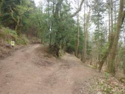 A good track climbs (30%) for 500m to reach a junction where the right fork is taken.