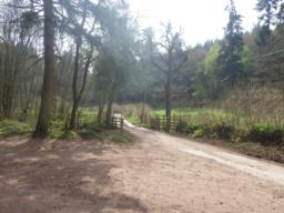 In 500m the track emerges from the woodland and joins a road.  [Turn left.]