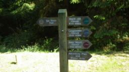 A signpost indicates the start of the Black Hill circuit which has green waymarkers.