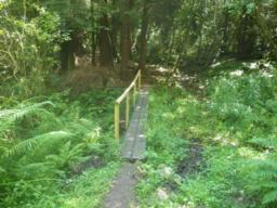 A boardwalk across marshy ground is 0.45m wide.  The support rail is 0.9m high.