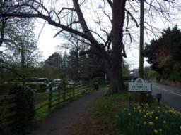 The main car park in Dunster is off the A396 close to the junction with the A39.  It can be busy at peak times.