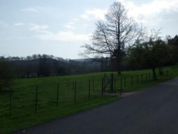 Unless a visit to the castle is planned, the route turns left through a kissing gate (50cm clearance) to follow a field path around the castle grounds.