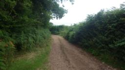 A very good track, known as Park Lane is joined and followed left (downhill).