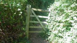 A narrow footpath (1m) runs alongside a hedge and climbs gently.  After 100m, there is a kissing gate (60cm clearance).