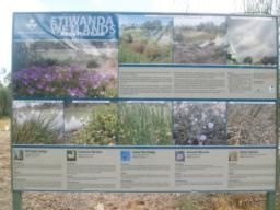 Information boards are provided around the site with details of the plants and animals to be seen.