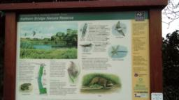 Information board - The reserve was once an area used for the disposal of sewage waste and it has also been affected by land drainage, mining subsidence and river straightening in the past. The restoration of the site, completed in 2002, has been achieved through a partnership between the Environment Agency, Leicestershire County Council, Leicestershire and Rutland Wildlife Trust, the National Forest Company and Severn Trent Water.  As part of the development of the site the highly modified channel of the River Sence has been diverted in places to form meanders and elsewhere small areas for flooding have been created along the river margins to extend the floodplain habitats. The reedbeds provide habitats for invertebrates, birds, small mammals and amphibians. The pools attract water birds and wading birds.