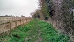 Follow the path with a fence to your left hand side.  Uneven gentle incline.