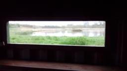 View from one of the bird hide windows.  There are wooden shutters that need to be lifted up and attached to stay open.  Please close shutters when leaving.  From the window on the right hand side are some bird feeders.  Great tits, blue tits, robins, dunnocks, great spotted woodpecker, willow tits, and chaffinches are regularly seen.  If you look to your left, there is a wall with holes in.  This is the sand martin wall which provides a nesting area for them between June and August.  The sand martins can be seen catching insects above the water.