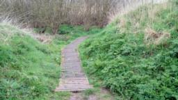 take the boardwalk back to main path, remember the step at the end.  Turn right.