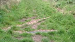 Two gravel drainage channels which aren't visible in the summer.