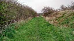 Uneven path, gentle incline and declines.  There is a fence and hedge on the left hand side.