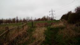 Incline of 2.3 degrees/4.0% You are now visiting the Forestry Commission's Kelham Bridge site.