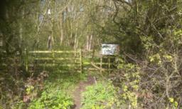 Entrance to wood is 10m from the road on the right hand side.  There is a dip in the path of 7.5 degrees/14%.