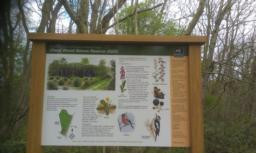 Interpretation board is on the right hand side (same text as the one at the other entrance).