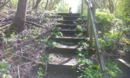 10 steps uphill.  The highest tread is 18cm tall.  Handrail is on the right hand side and the first section is broken.