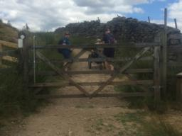 A wooden field gate that opens towards the user and steep, rough track surface.