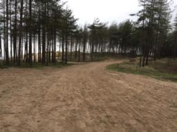 Sand can blow onto the trail from the dunes
