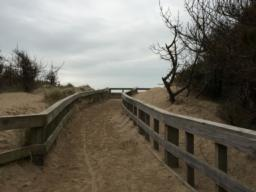 The path to the viewing platform can get covered in sand from the dunes
