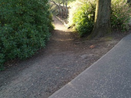 There is a lip (40mm) to the edge of the tarmac path that leads onto a stone path with a cross slope of 15% ( 1:7) and a linear gradient of 12% (1:8) for about 20m.