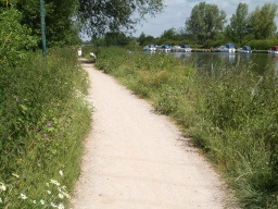 The path has a cross slope towards the canal along most of its length.
