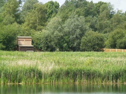 The upper level of the hide gives views over the reed bed and the water areas near at hand. The two-level hide at the start of the board walk can be seen across the reed beds.