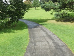 The path surface remains in good condition.