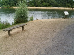 A bench overlooks the lake